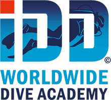 idd-worldwide-academy
